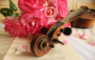 Beautiful violin