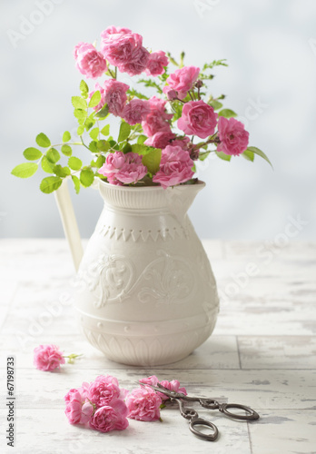 canvas print picture Cutting Roses