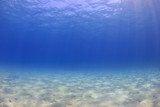 Underwater background - sunlight on ocean floor