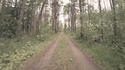 Driving fast down an unpaved country road.