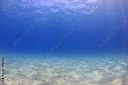 Leinwanddruck Bild Underwater background - sunlight on ocean floor