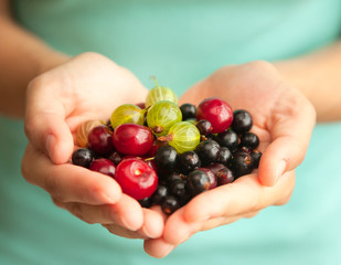 different bright berries in female hands