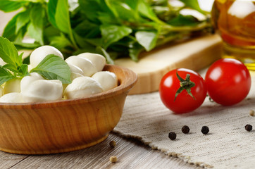 Mozzarella, tomatoes, basil and oil