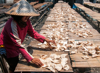 Drying fish in Jakarta fishing port