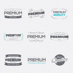 Vintage premium quality stickers and elements vector collection