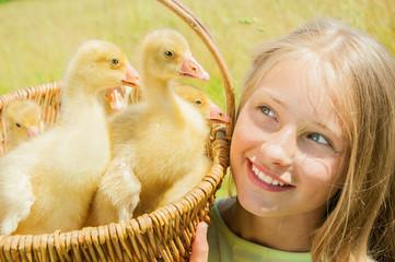 Happy little girl holding the basket of goslings