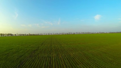 green field from height