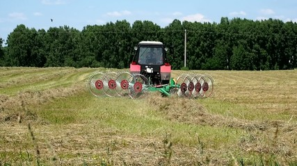 Farm work in the field. Tractor collects mown hay