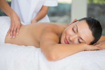 Smiling brunette enjoying a back massage
