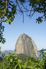 Sugarloaf Mountain Rio Brazil Greenery