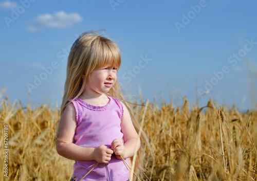 Little girl walking in a wheat field