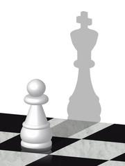 Pedina di scacchi con ombra di re