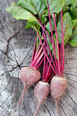 Beetroot. Fresh Organic Beets From Garden.