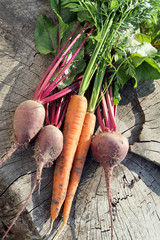 Fresh organic carrots and beet.