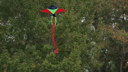 beautiful flying a kite
