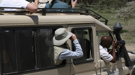Safari tourists