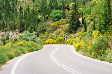 Asphalt road winding through flower hills with trees