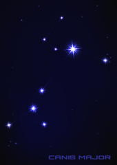 Canis major star constellation