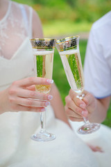 hand the bride and groom with glasses of champagne