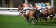Leinwandbild Motiv Pferderennen in Hongkong