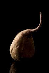 Yam on black background