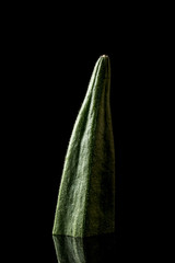 Okra on a black background