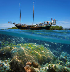 Sailing boat stranded on reef with fish and coral