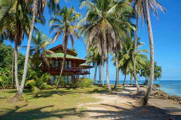 Tropical beach house with coconut trees