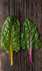Heirloom Swiss Chard