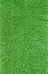close up artificial green grass leaves use as nauture and multip