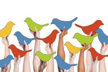 Social Networking Concept Birds