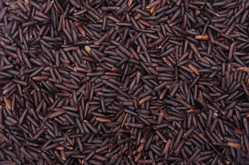 Background of grain wild rice