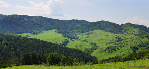 Beautiful summer alpine panorama with green wooded mountains
