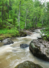 Beautiful summer landscape with rapid mountain creek