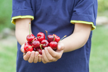Adorable boy, holding cherries
