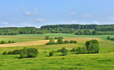 landscape in Walloon, province Namur in Belgium