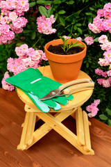 Gardening tools on wooden table and rose flowers