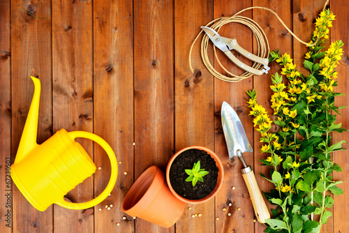 Copyspace frame with gardening tools on old wooden background - 67230503