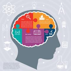 Education infographics concept