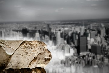 Large rock overlooking huge city