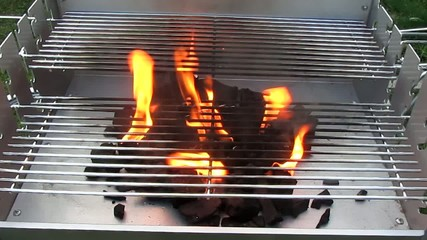 Fire of wood coal bellow steel grille