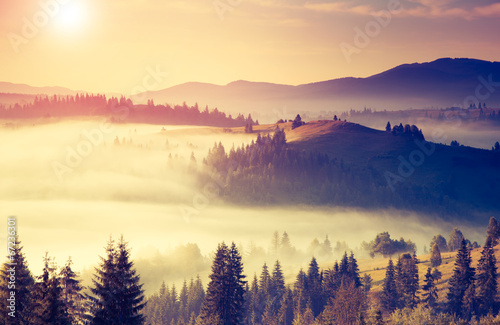 Konzeptuelle Landschaft