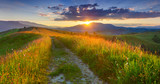 Fototapety Panorama of the colorful summer evening  in the mountains.