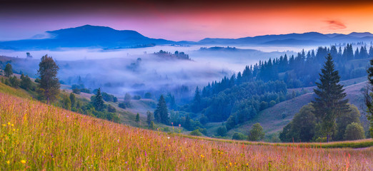 Foggy summer morning in the Carpathian mountains.