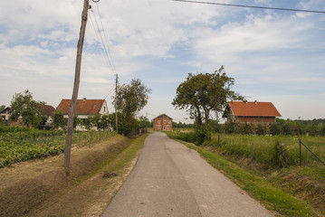 Road Through a Village