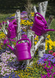 Colorful flower garden with watering can hanging down