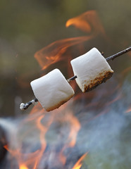 marshmallow on a stick