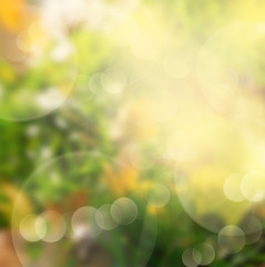 green and yellow bokeh background