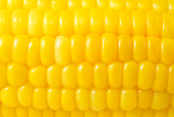 corn background, macro closeup