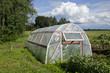 greenhouse hothouse in summer farm garden
